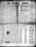 Stouffville Tribune (Stouffville, ON), August 17, 1916