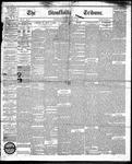 Stouffville Tribune (Stouffville, ON), June 19, 1891