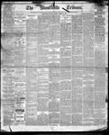 Stouffville Tribune (Stouffville, ON), March 24, 1893