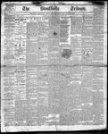 Stouffville Tribune (Stouffville, ON), November 30, 1893