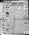 Stouffville Tribune (Stouffville, ON), February 28, 1895