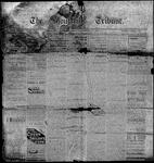Stouffville Tribune (Stouffville, ON), October 17, 1895