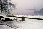 Lions Gate Bridge in Winter