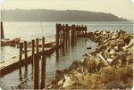 Old Ferry Landing