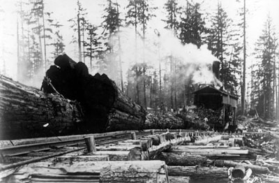 McNair Fraser Logging Camp