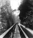 Capilano Canyon Log Flume