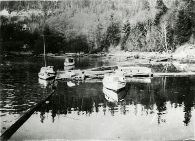 Skunk Cove