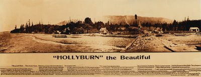 Hollyburn the Beautiful