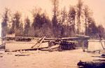 Capilano River Bridge