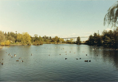 Ambleside Lagoon