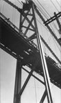 Lions Gate Bridge Under Construction