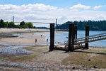 Lions Gate Bridge from Ambleside Beach