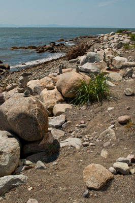 Mini Inukshuks Along Ambleside Beach