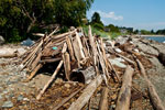 Driftwood Fort on Ambleside