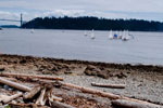Sailboats in Burrard Inlet