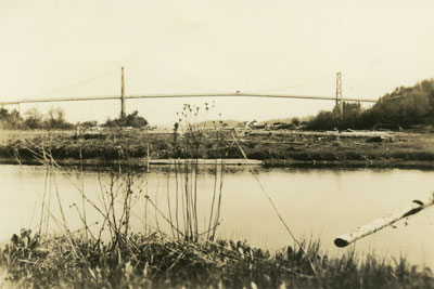 Lion's Gate Bridge from Ambleside Slough