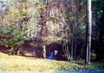Memorial Park (1950's)