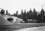 Marine Drive Overpass