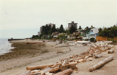Ambleside Landing beach area