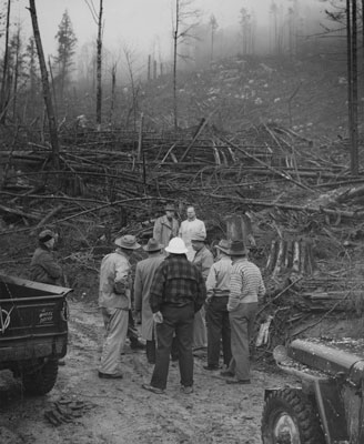 West Vancouver Council Member, George Thompson and others, survey clearing on Hollyburn Mountain