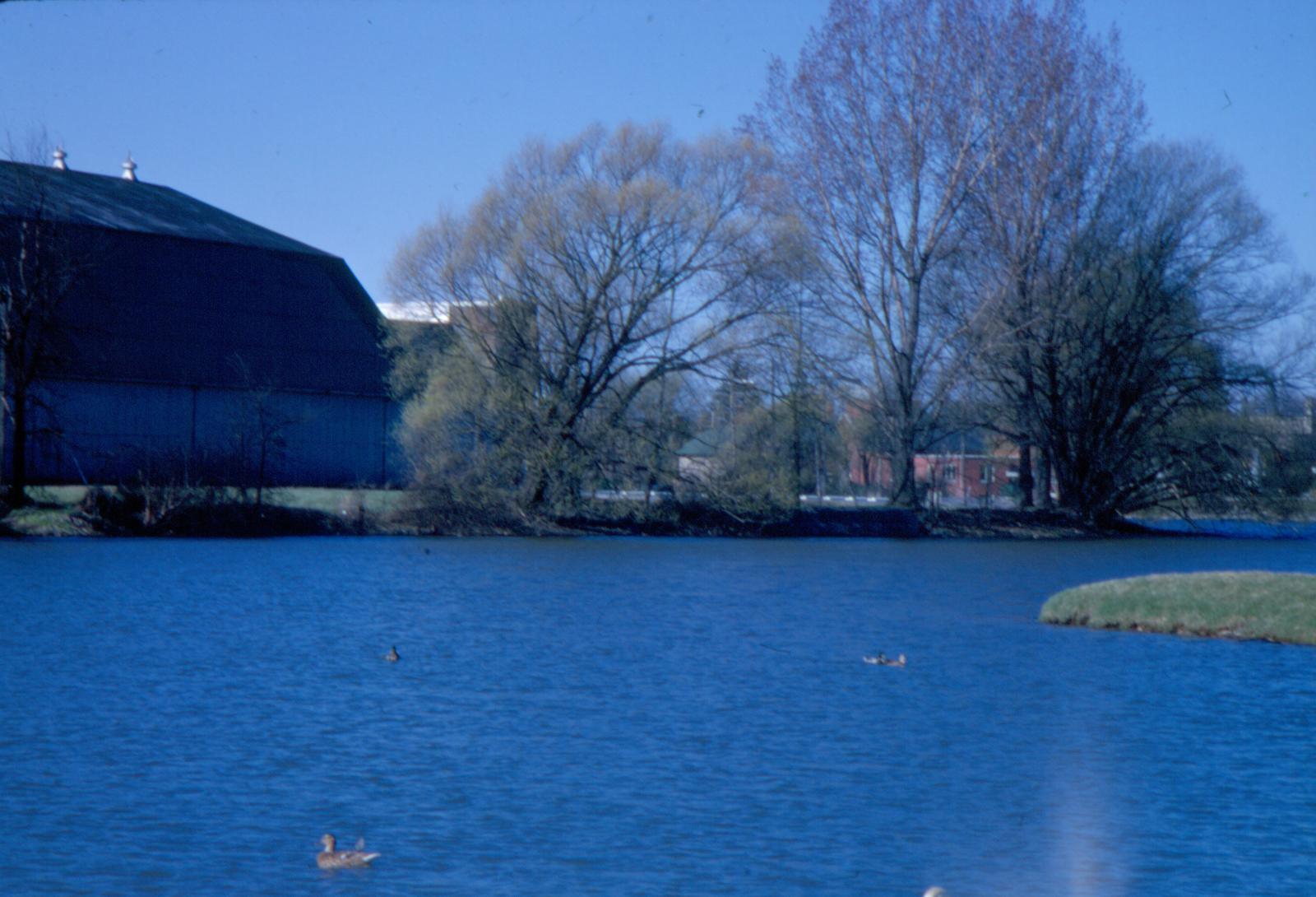 Waterloo Memorial Arena from Silver Lake