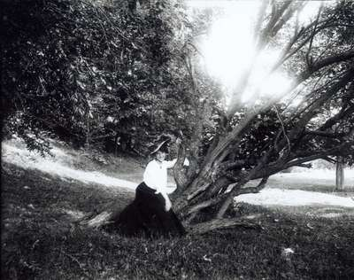 Woman By Tree
