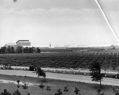Lake Ontario Steel Company Limited, c. 1964