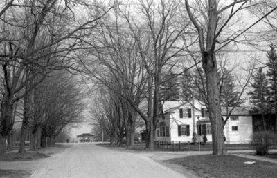 Mill Street (Cassels Road), April 1976