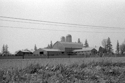 Batty Farm, April 1976