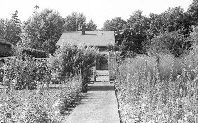 Cormack Garden, July 1937