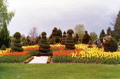Topiary Garden at Cullen Gardens