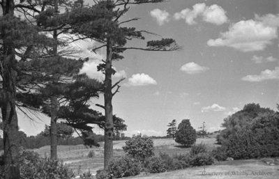 Landscape, c.1937