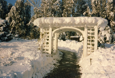 Christmas at Cullen Gardens, December 1992