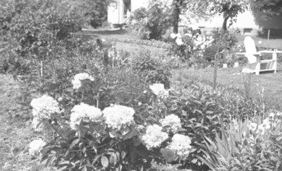 Garden at Inverlynn, June 1936