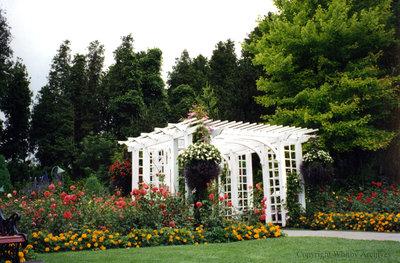 Arbour at Cullen Gardens
