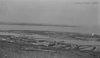 Floating Logs in a Lake, c.1915