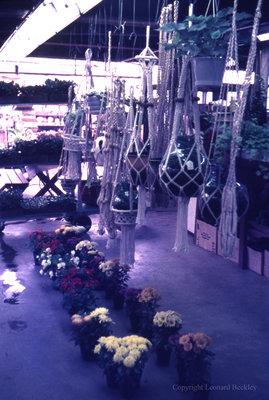 Garden Centre, May 1976