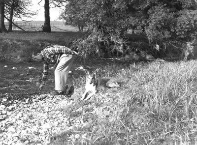 Nick Thorah and dog, May 23, 1950