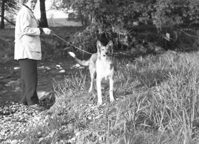 Heather Thorah and Dog, May 23, 1950
