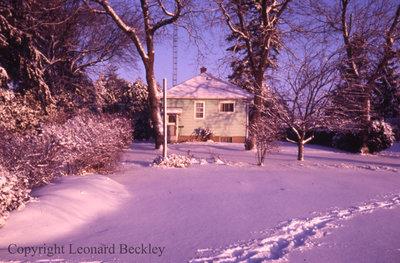 Leonard Beckley's Backyard, November 21, 1986