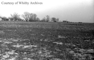 Cranberry Marsh, January 1938