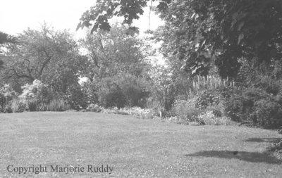 Gardens at 600 King Street, July 5, 1939