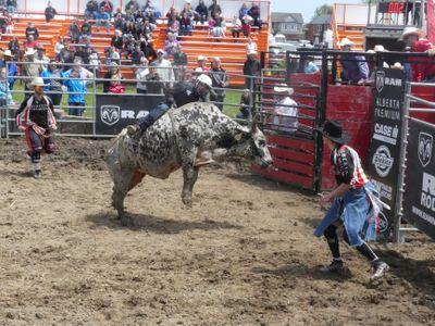 Bull Riding at the Brooklin Spring Fair, c.2017