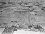 Red Wing Orchards, 1929