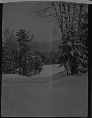 Byeways Lodge, 1946