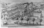 Print of Brown and Patterson Manufacturing Company, 1877.
