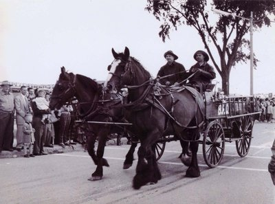 Two Ajax firefighters driving a horse drawn fire wagon
