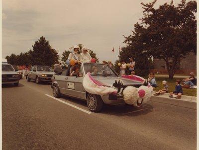The Owasco Volkswagen Bunny