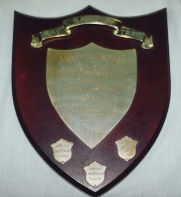 Ajax Safety Council Award