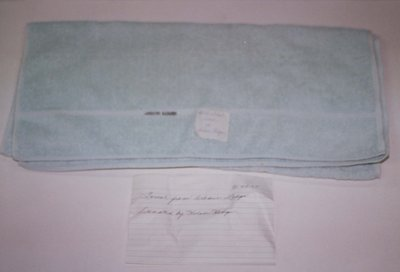 A Towel from Arbor Lodge